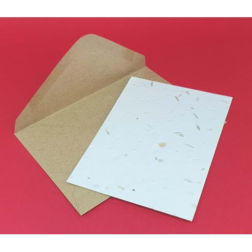 10 x A5 Seeded Plantable Cards & Eco Friendly Envelopes