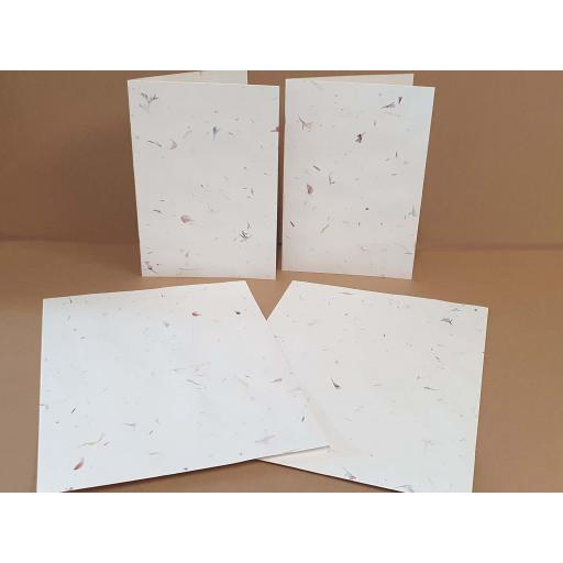 Petal and seed Card3.jpg